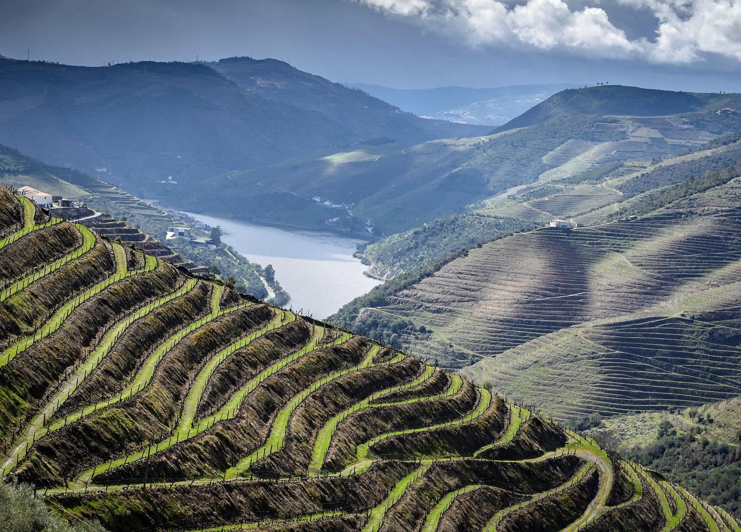 Das Douro Tal Im Norden Von Portugal